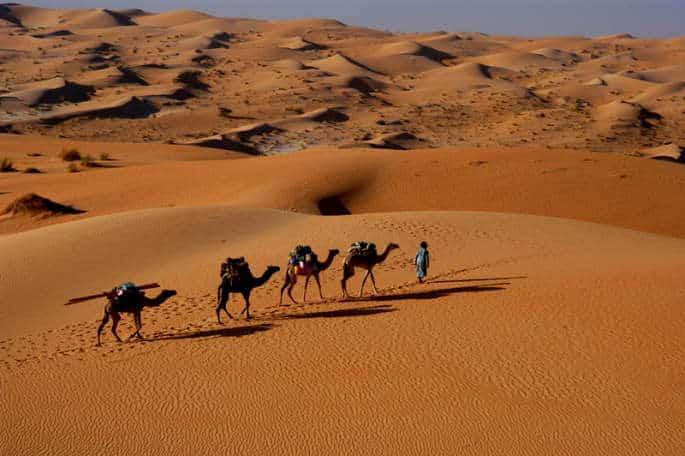 Randonnée chamelière au Maroc
